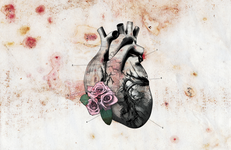 b005-bloodymarvellous_heart