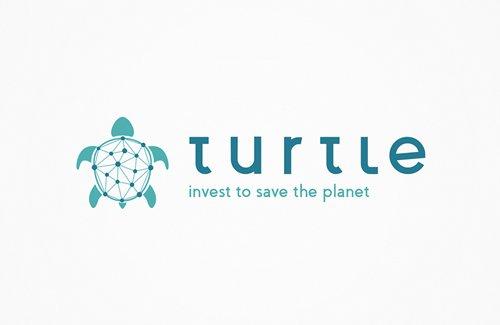 dl017-turtle