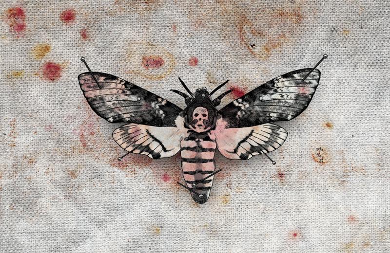 b003-bloodymarvellous_moth